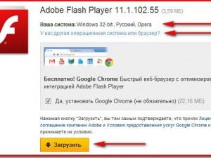 Куда устанавливается adobe flash player
