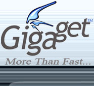 gigaget-download-manager-logo