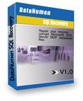 DataNumen-SQL-Recovery_logo
