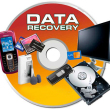 Raise_Data_Recovery_for_FAT_logo