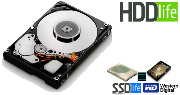 HDDlife logo