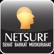 NetSurf 2