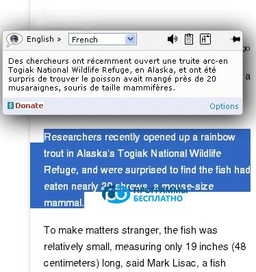ImTranslator-screenshots-1